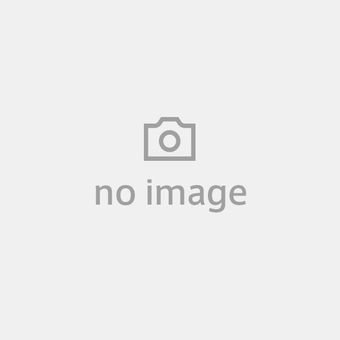 Red tabby cat and foxtail grass patterned umbrellas