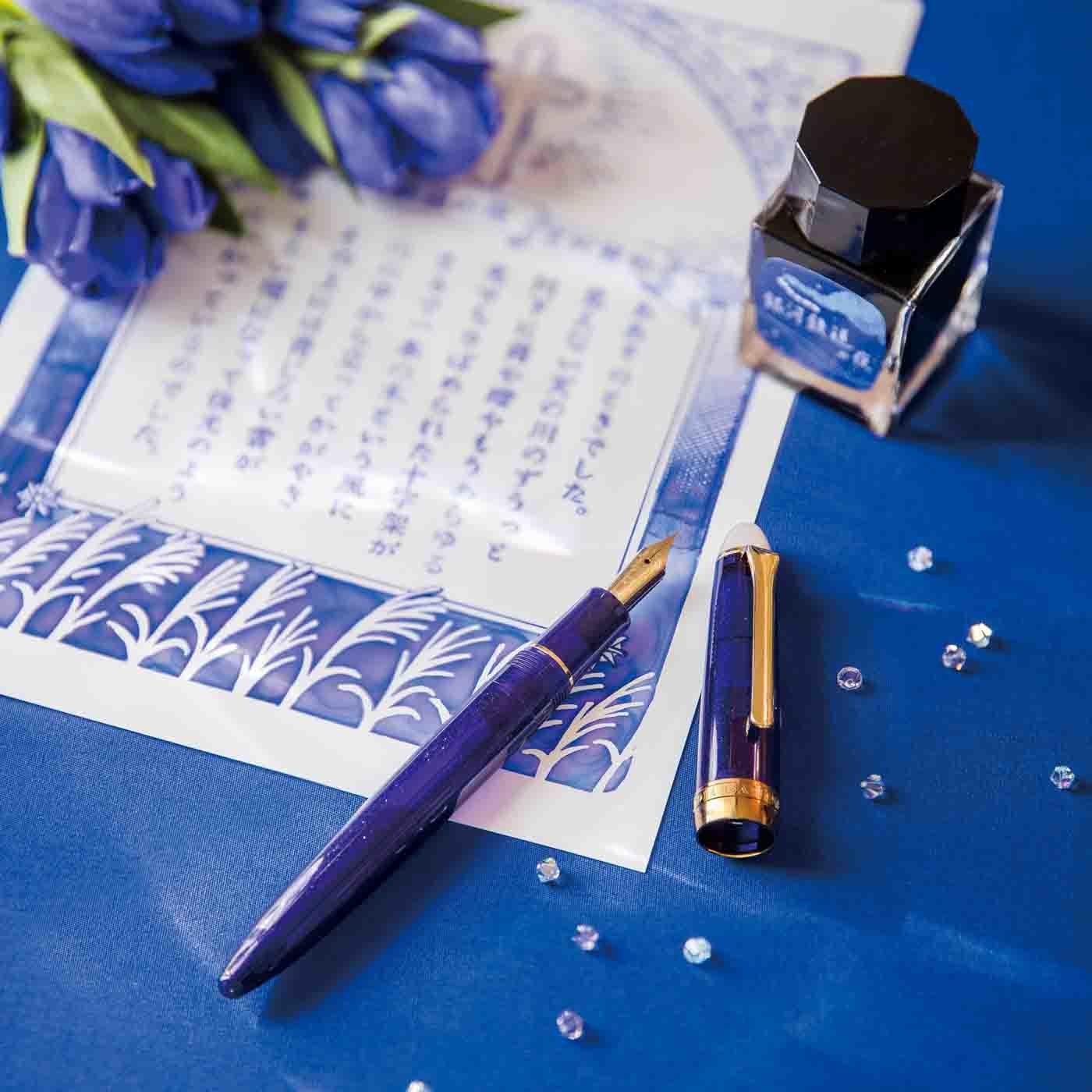日本近現代文学の世界をより楽しむための万年筆&コンバーターセット