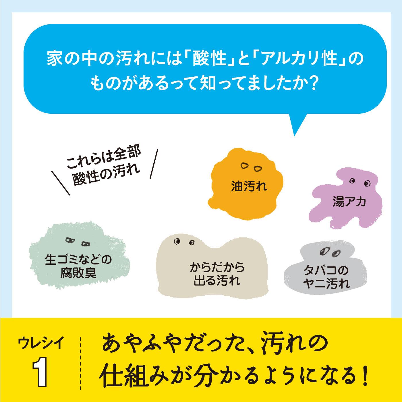 監修は、ナチュラルクリーニング講師 本橋ひろえさん。