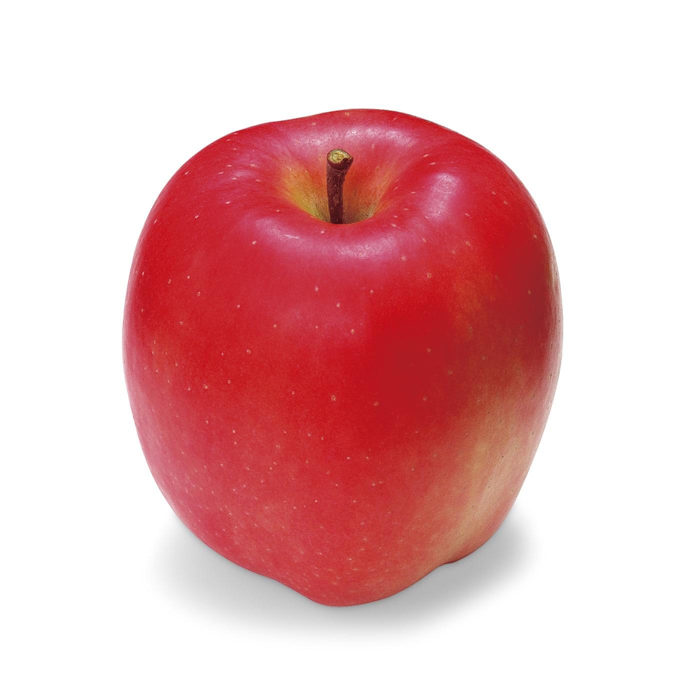 リンゴをひとつご用意ください。