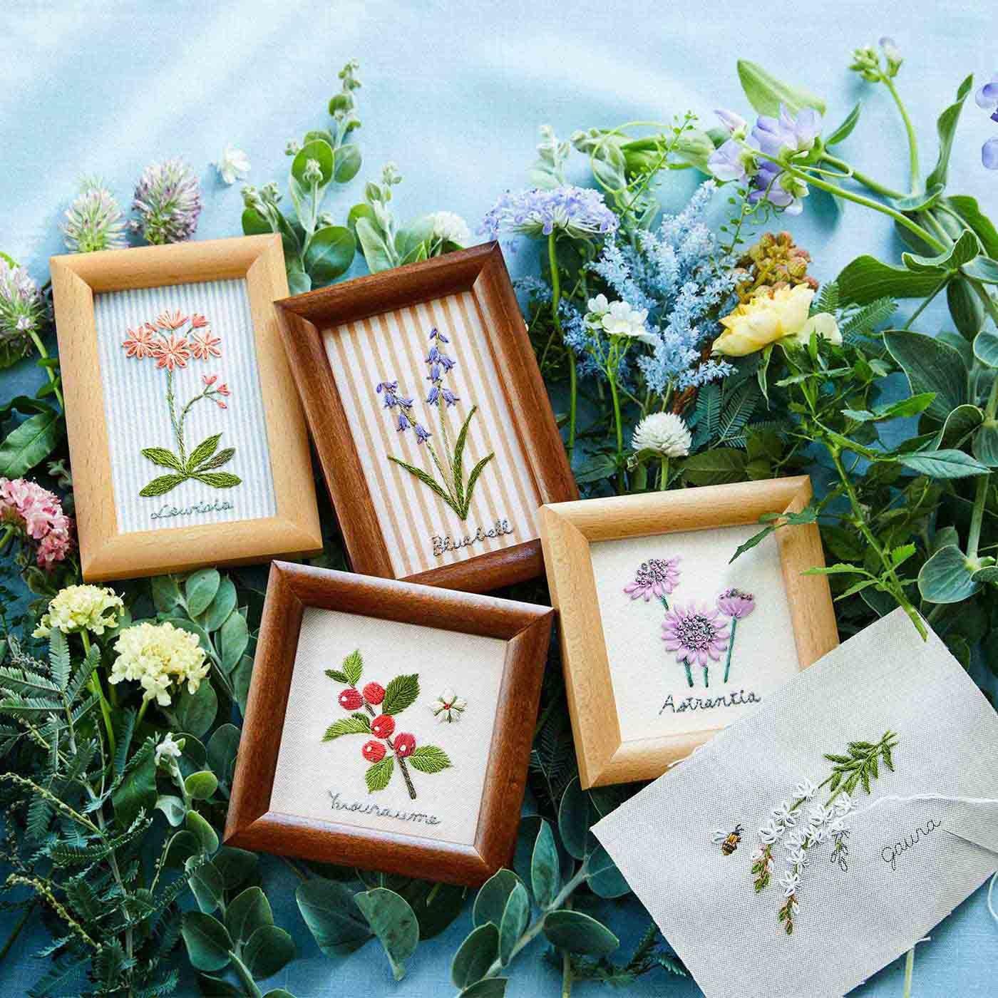 摘みたてを集めた 花と木の実のサンプラー刺しゅうフレームの会