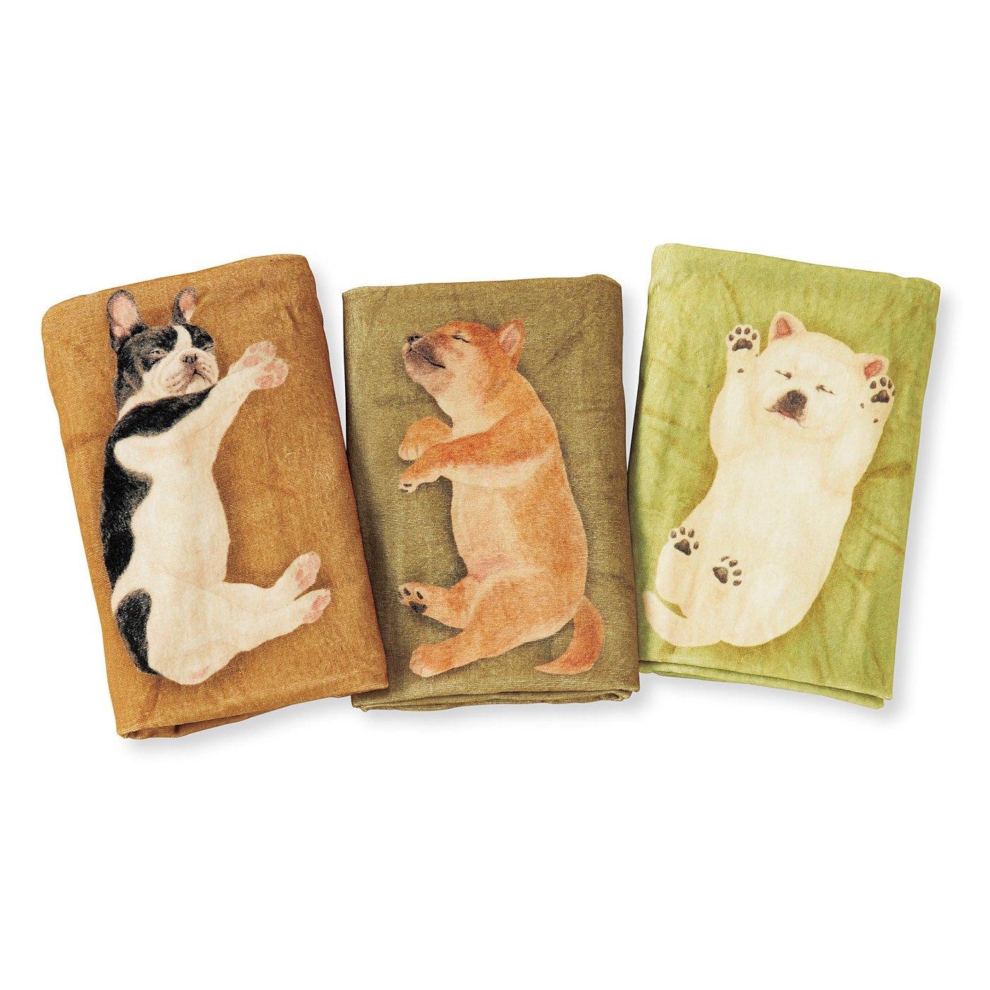 左から、フレンチブルドッグ、柴犬、紀州犬