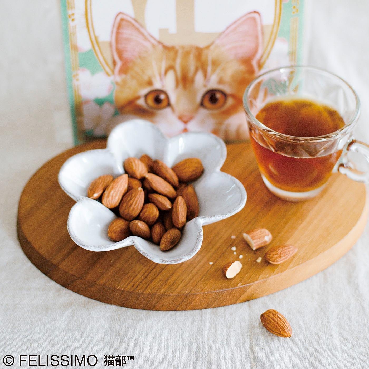 アーモンド形の猫の瞳 アーモンドニャッツ〈食塩無添加〉の会