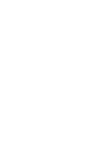 Everyday is a Trip