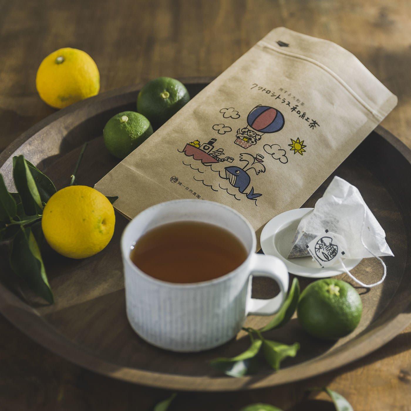 健一自然農園×フェリシモ 旅する大和茶セット〈ティーバッグ〉の会