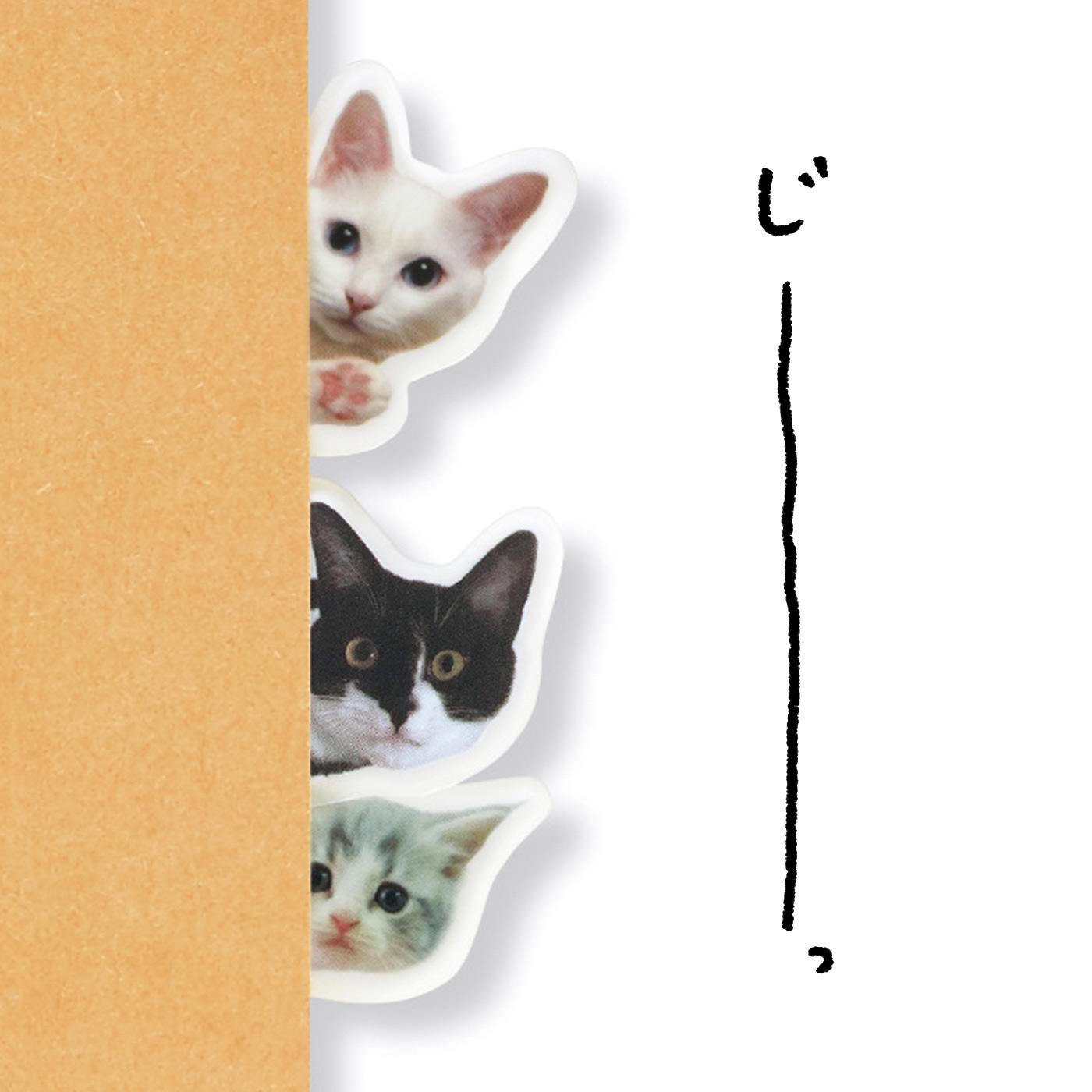のぞき猫 視線の主はココ! こっちを見てる。子猫も登場♪