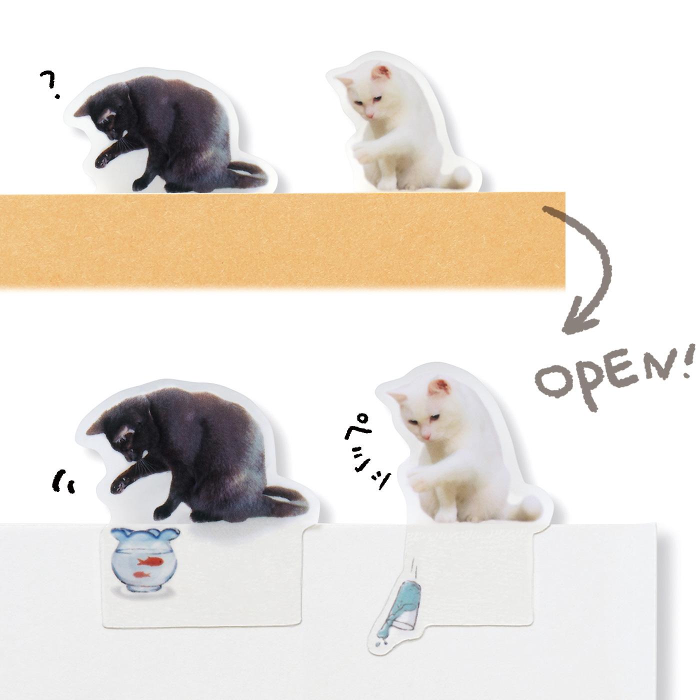 まわりで遊ぶ猫 本の上に乗っているだけだと思いきや、実はいたずら中。