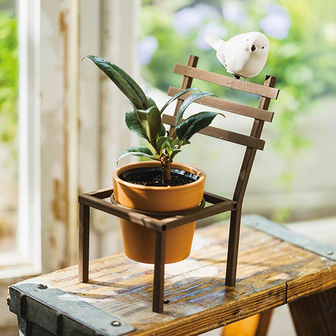 あなたのお花を見守るよ♪ かわいい小鳥のいす型ポット