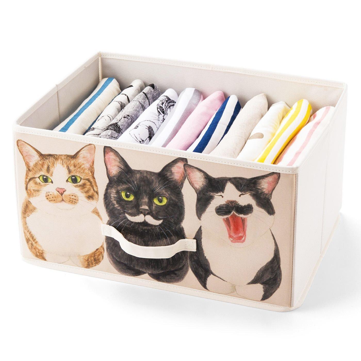 YOU+MORE! 棚が猫まみれになる 香箱座り猫の収納ボックスの会