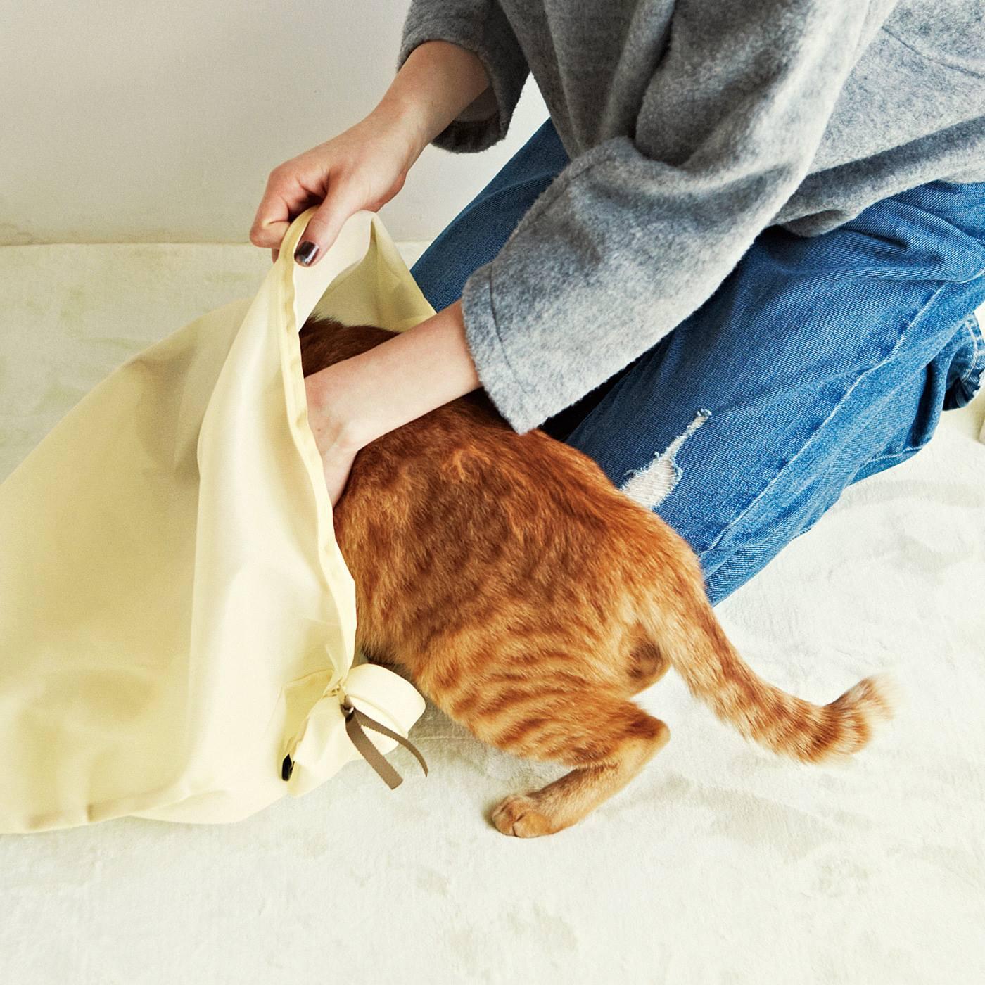 1.猫さんをネット袋に入れる。