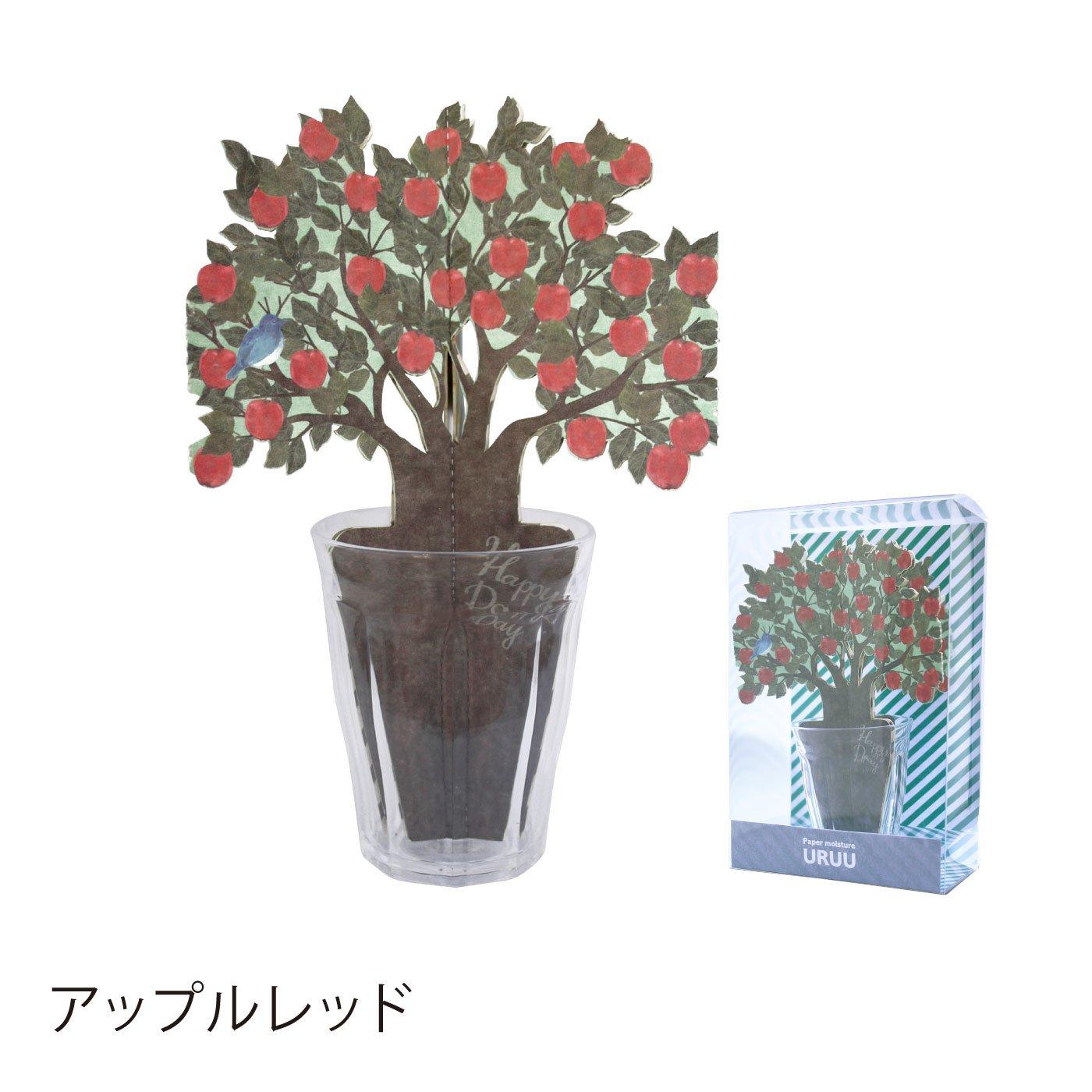 URUU(ウルウ)お花のペーパー加湿器
