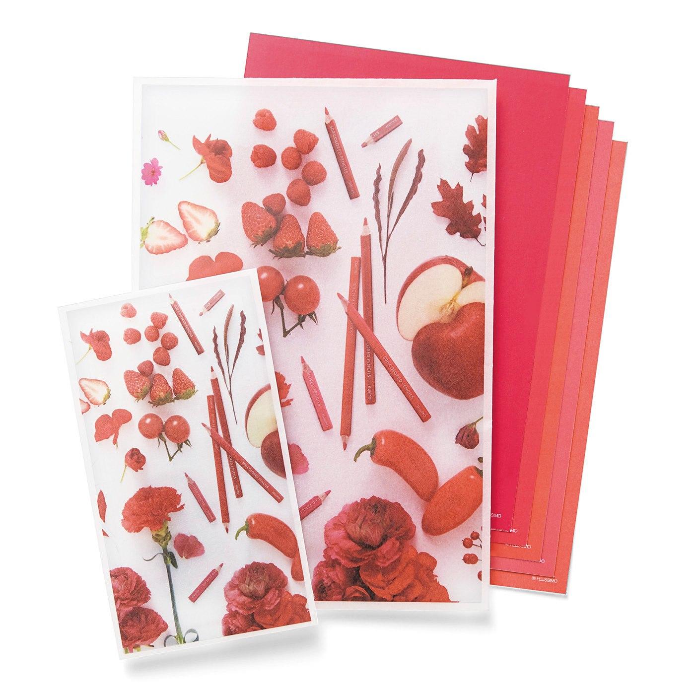 500色の色えんぴつ TOKYO SEEDS カラーメッセージを贈ろう!透け感にときめくギフト袋セットの会