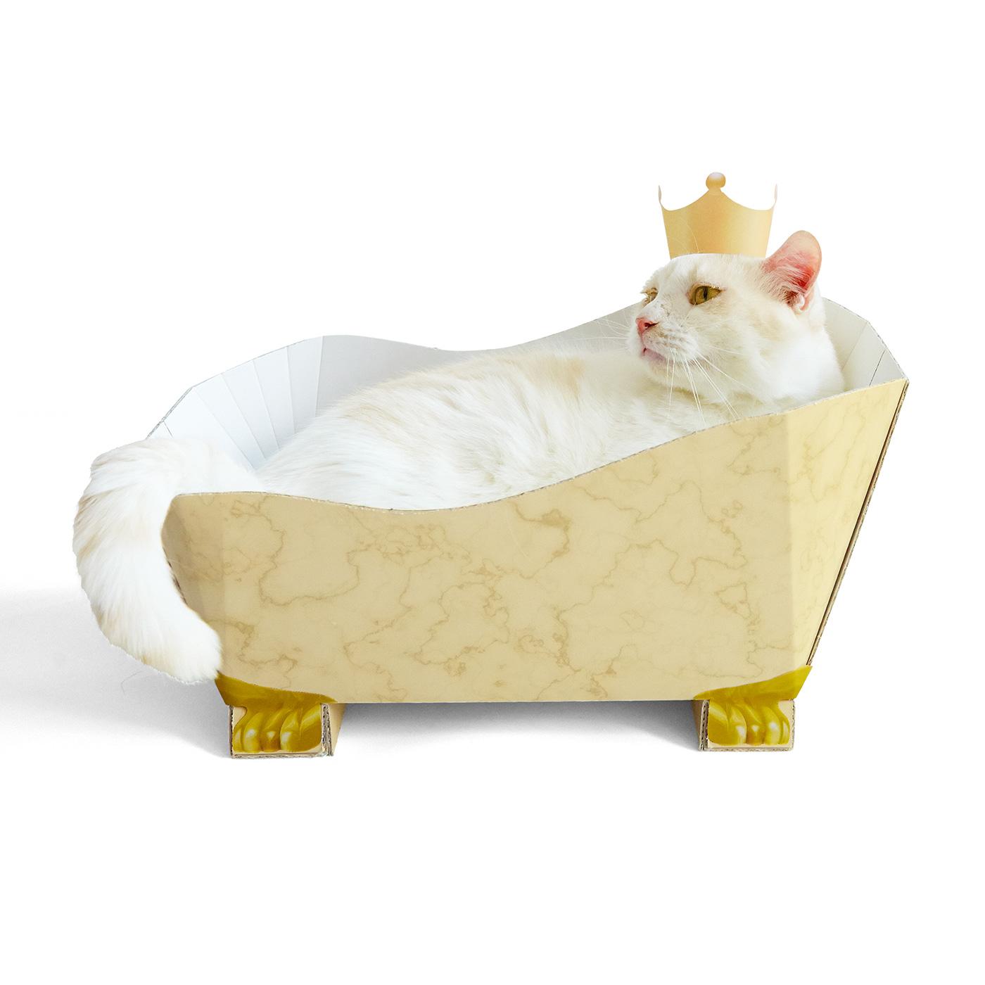 〈ベージュ〉王冠かぶって王さま気取り。トム 約4.5kg