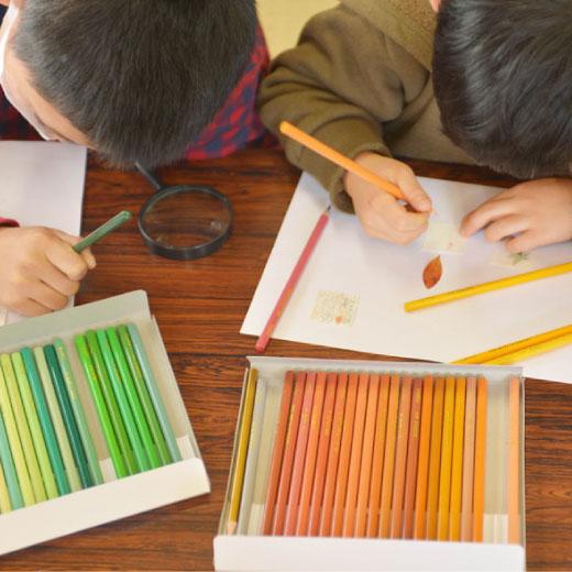 「てのひらを太陽に基金」が付いています。アートワークショップを通して、心のケアが必要とされる災害地域や、医療機関、保護施設など、子どもたちの夢や感性をはぐくむ活動に運用されています。