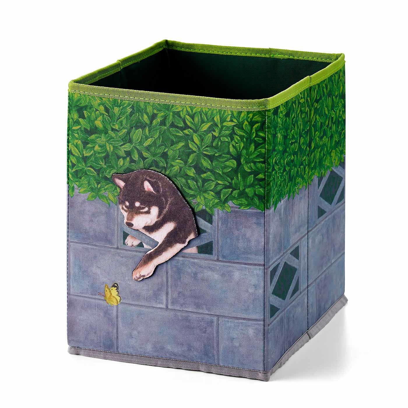 YOU+MORE! 壁からひょっこり! 好奇心旺盛な 柴犬収納ボックスの会