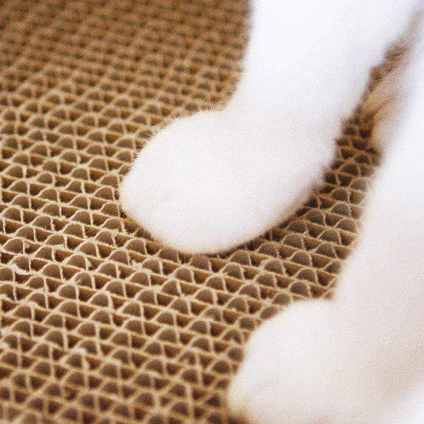 リフト内床面にはつめとぎができる厚さ2cmの段ボールコア。