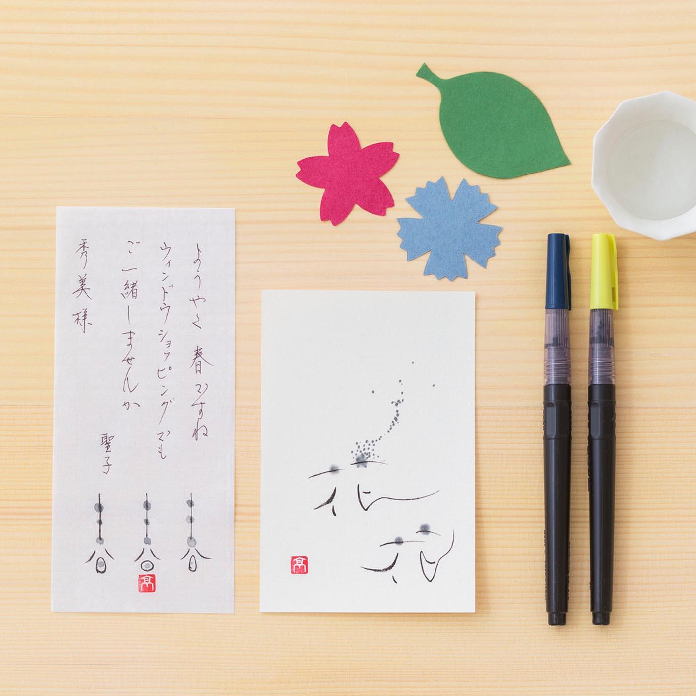 届いたその日からあなたも書家になれる。筆ペンで描くわたしの書 高砂流「創の書」生活編の会に必要な筆ペンです。