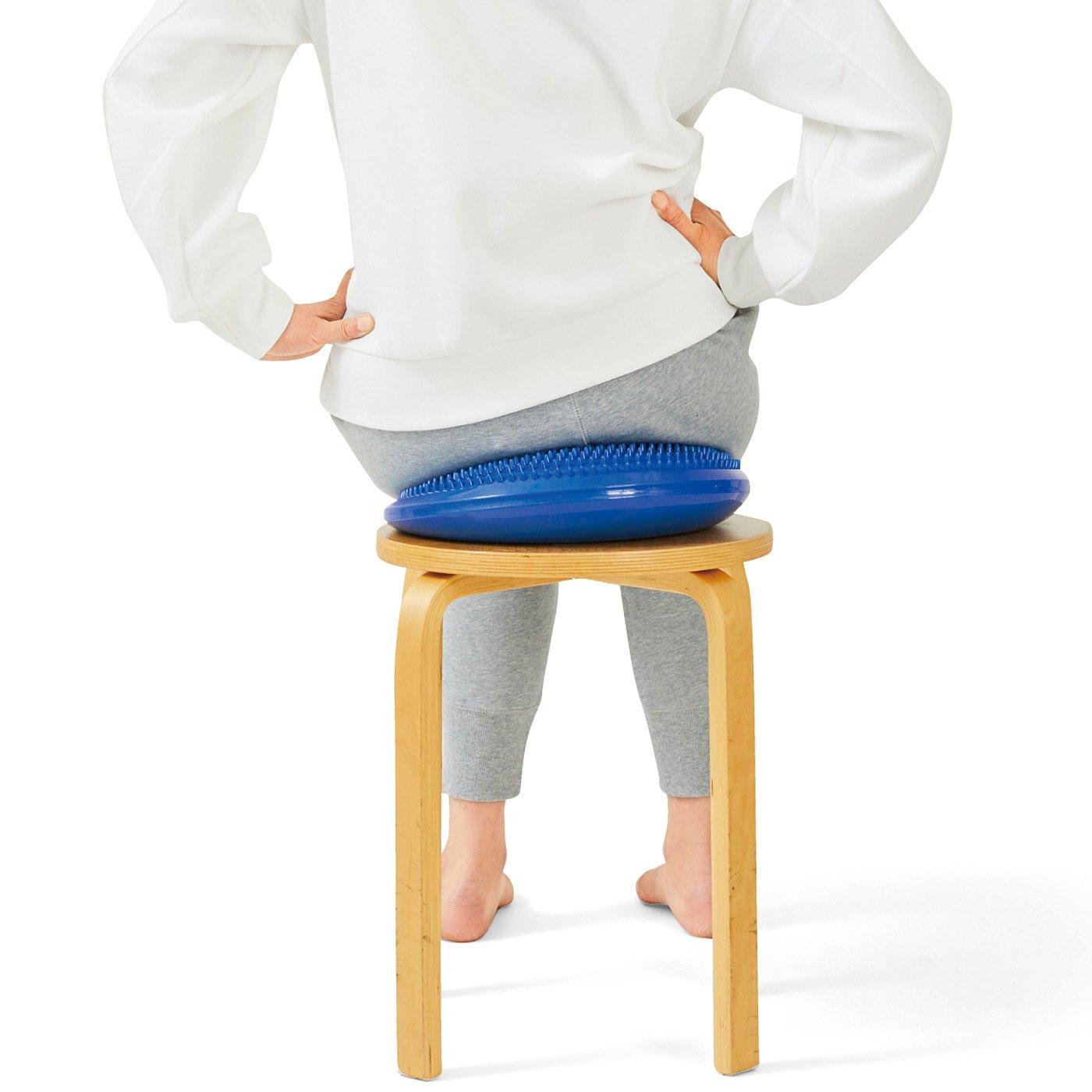 理学療法士監修 座るだけで簡単エクサ 体幹を意識するバランスクッション