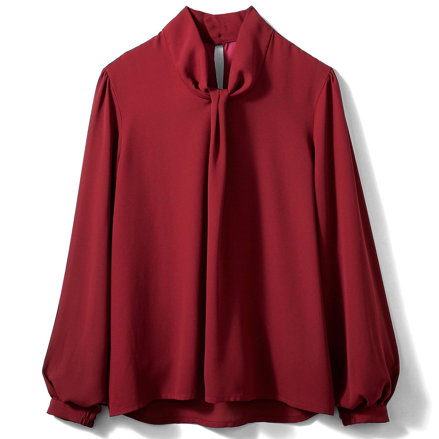 【3~10日でお届け】IEDIT[イディット] 結ぶ手間いらず! Tシャツ心地で快適なボウタイ風ドッキングTブラウス〈ワインボルドー〉