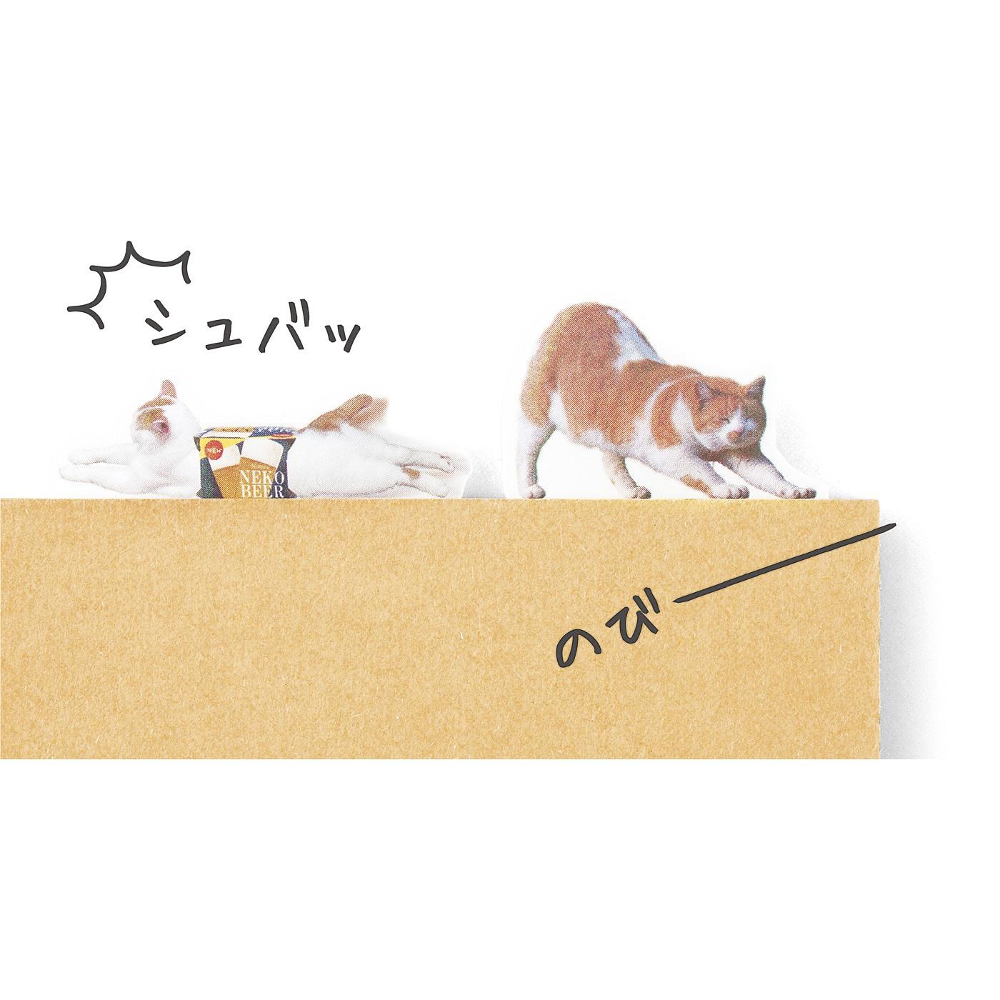 まわりで遊ぶ猫 本の上ですべったり伸びたり、自由気ままに遊ばせて。