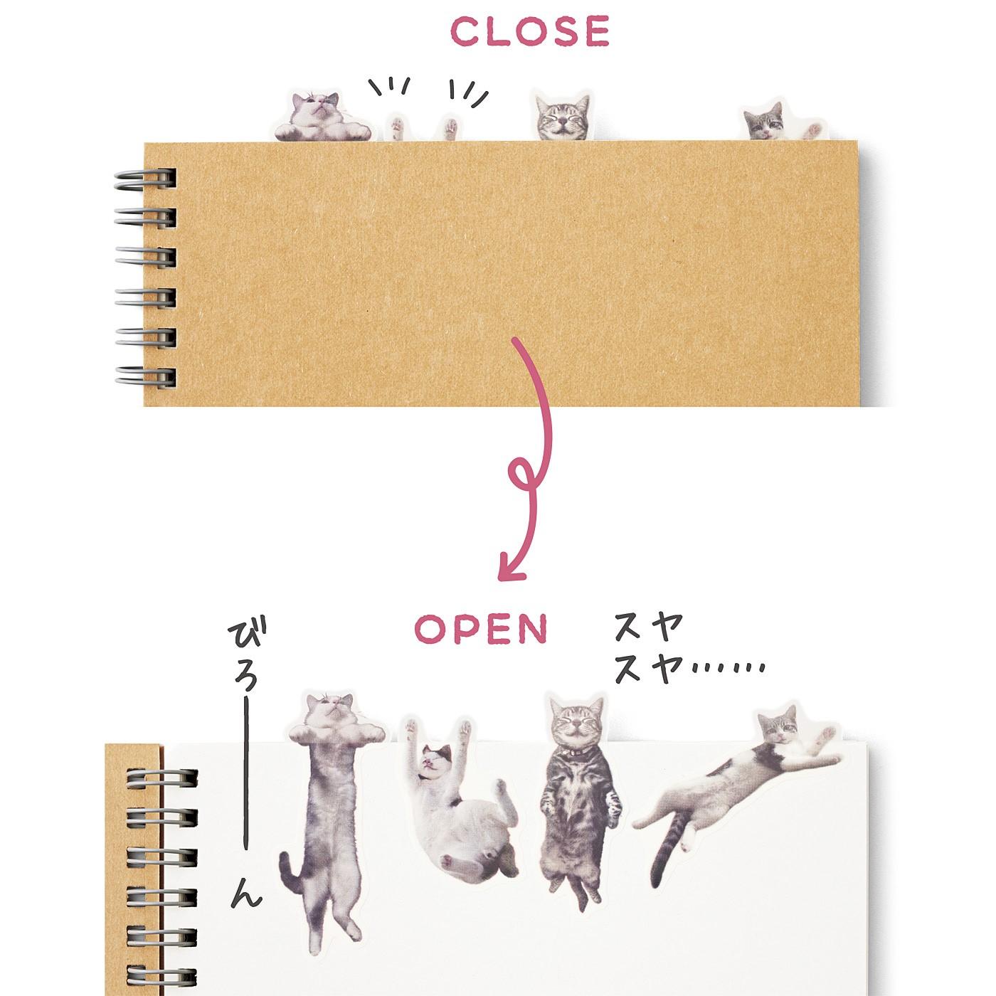 開けると……猫 本の中からチラリ、にゃんこの手。開くと、こんなことになっていた!