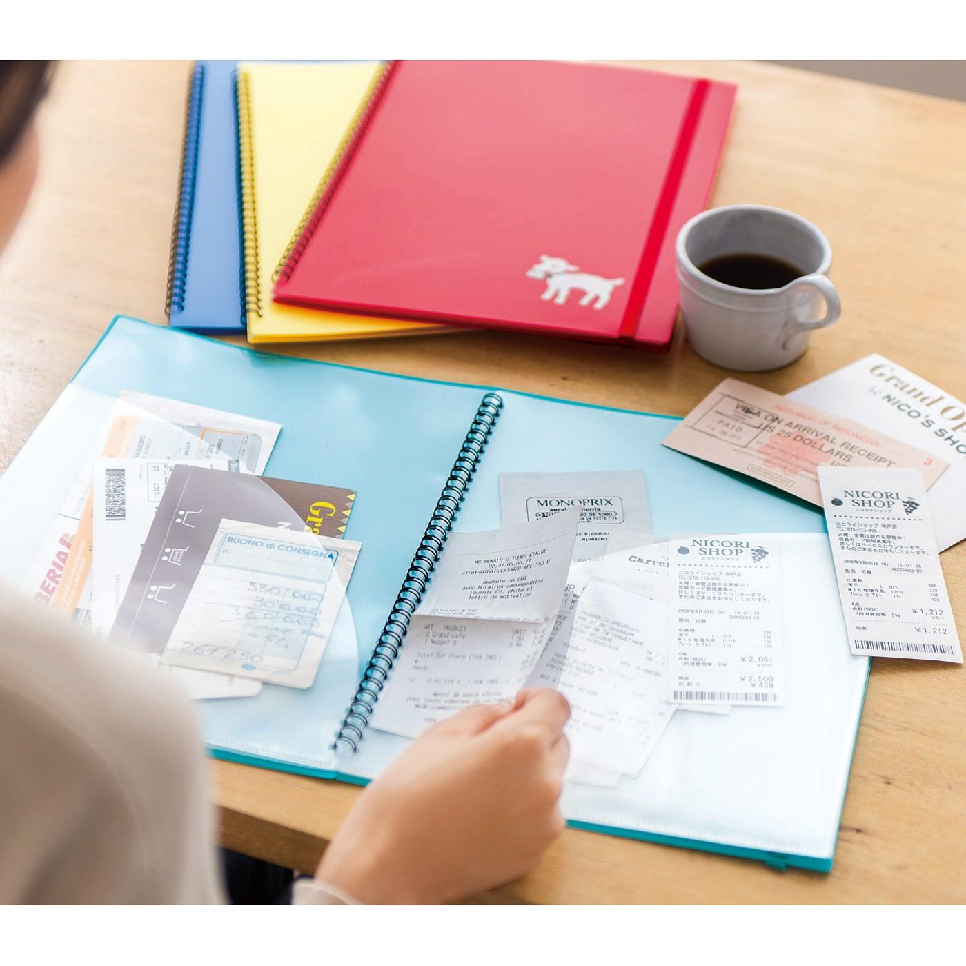 レシートや医療費の整理は、出し入れがしやすくて探しやすいファイルが便利。
