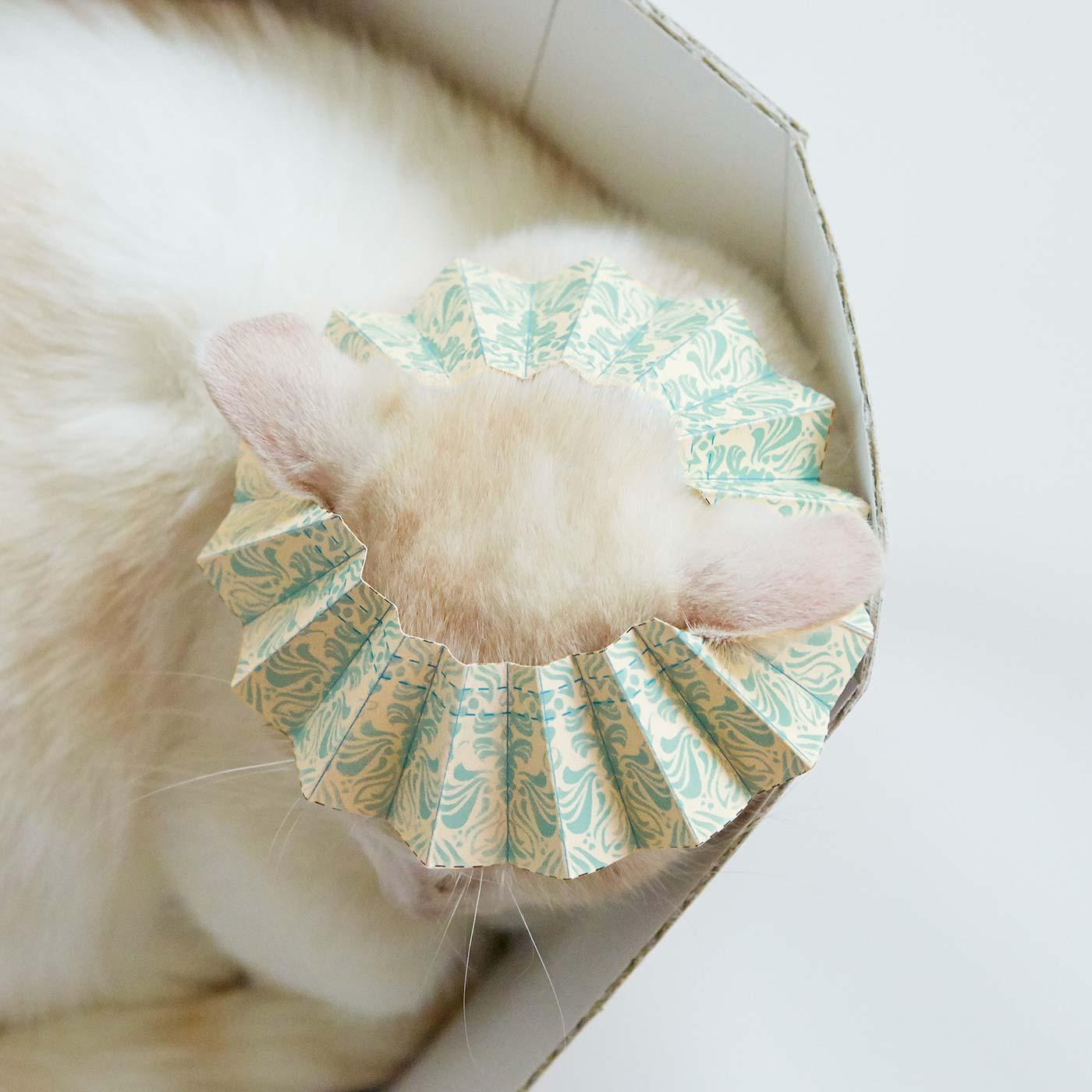 シャンプーハットはネコ耳ポケット付きで頭にすっぽり。
