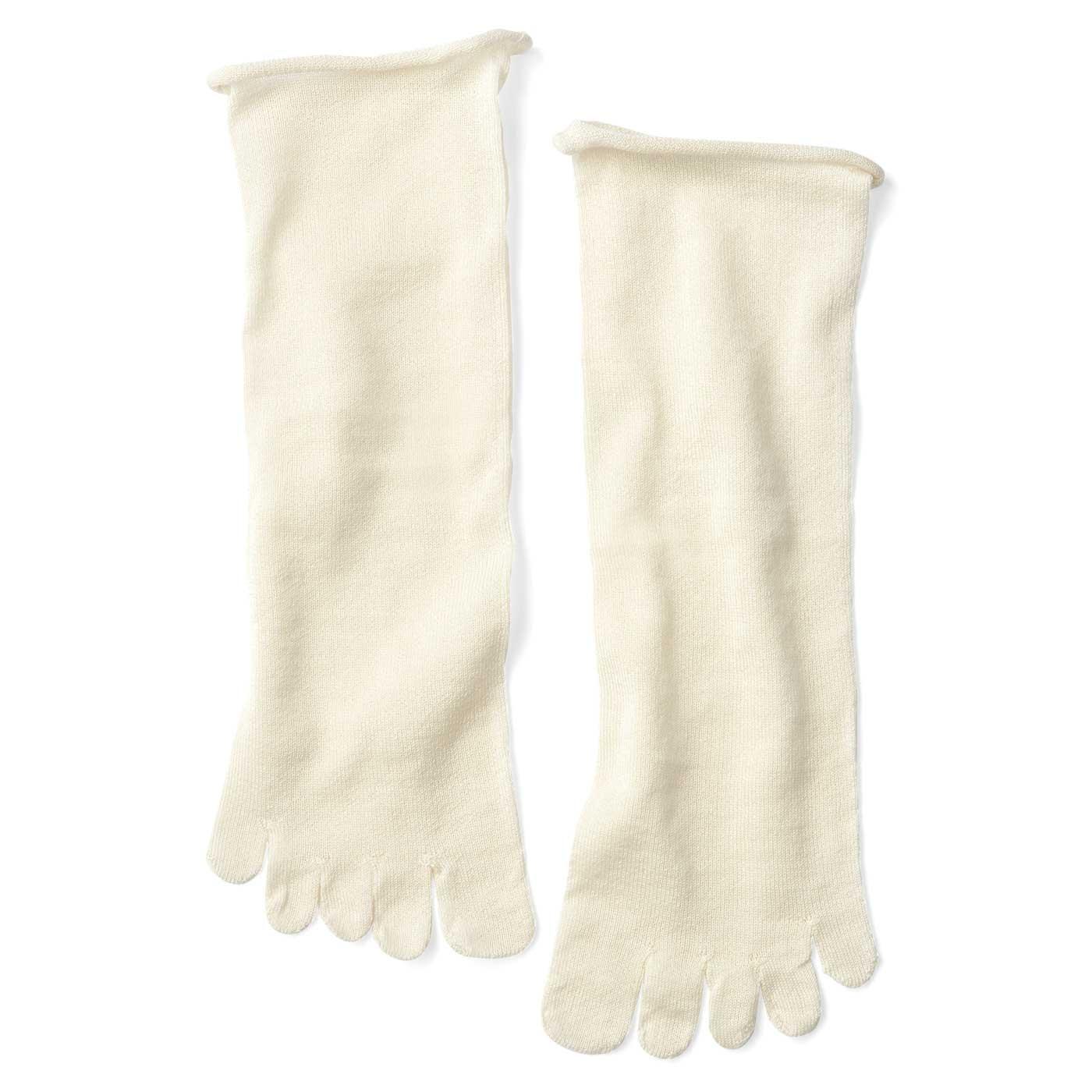 「重ねばき靴下スターターキット(Z17508)」の1足目と同じだから、洗い替えにも。