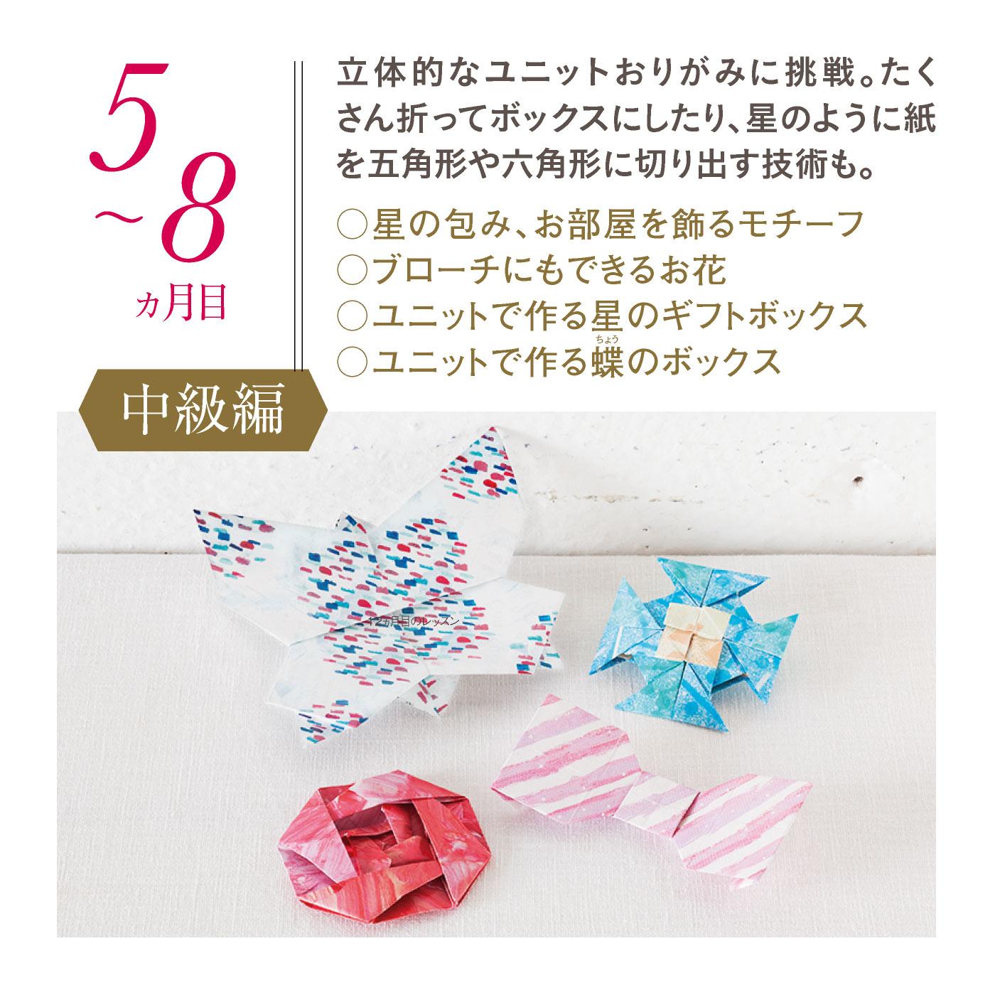 【5~8ヵ月目・中級編】
