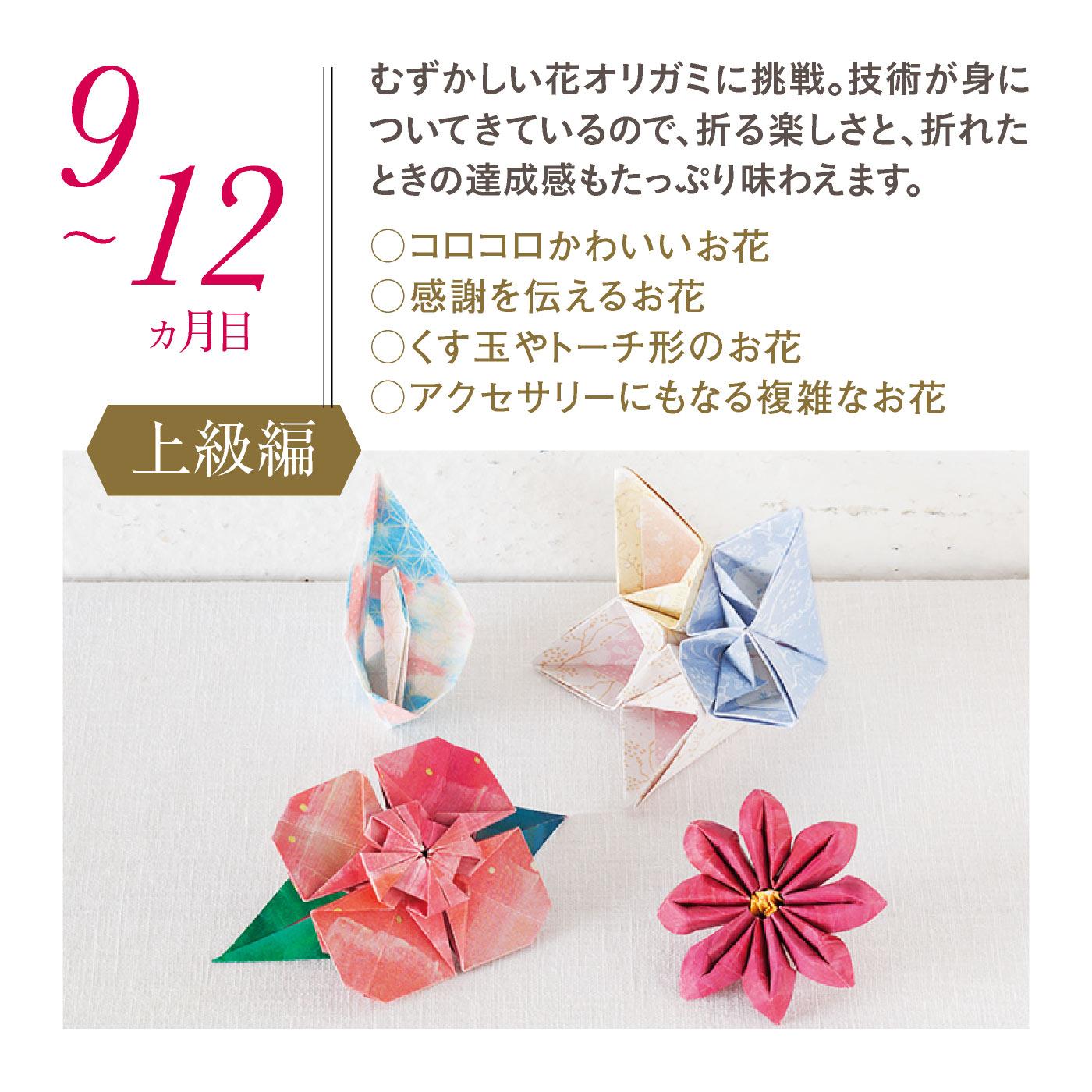 【9~12ヵ月目・上級編】