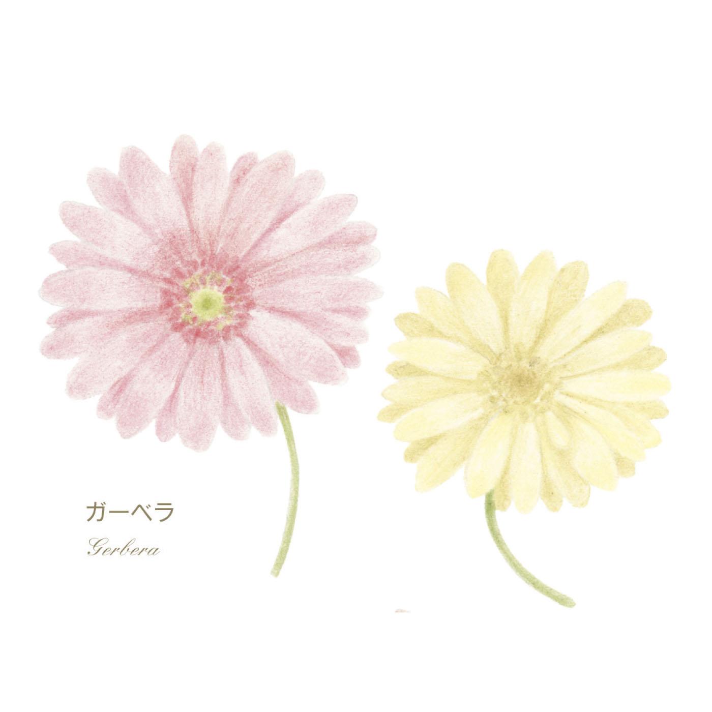 いろいろな花にチャレンジしてみよう!