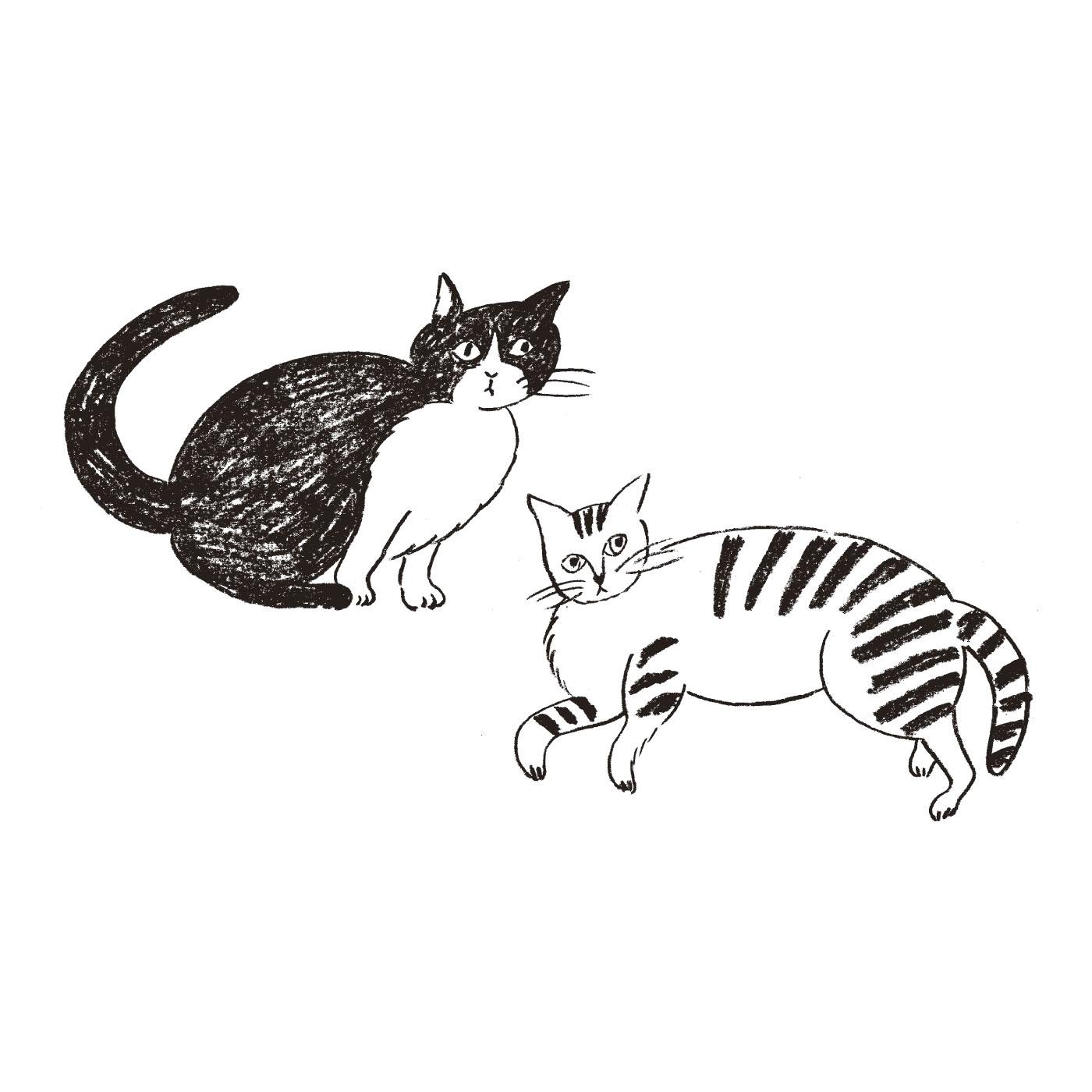 かわいい猫のイラストを描いてくれた人 Profile:松尾ミユキ ニュアンスのある手描きの線と独自の世界観のあるイラストが人気。雑誌、書籍、パッケージなどの他、食器やファブリックといったプロダクトのイラストレーションを手がけている。