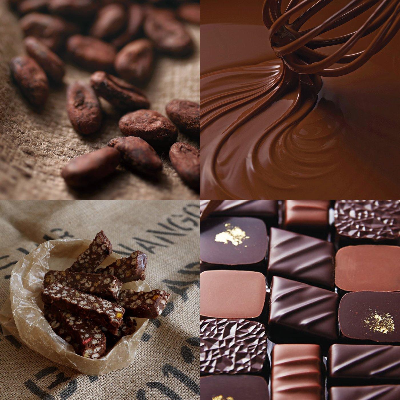 もーっとチョコレートライフ!一年中チョコを楽しむプログラムトライアル [2回予約]