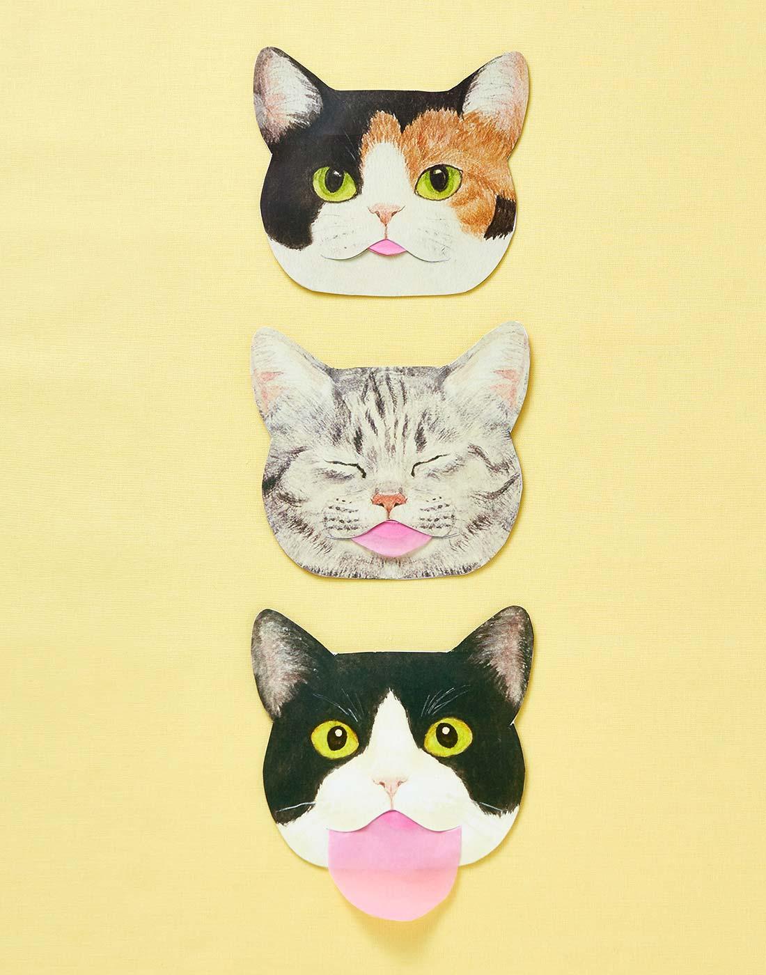 papier matifiant chat