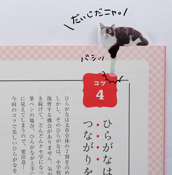 お勉強中のみにゃさまにおすすめはこの猫さん。大事なポイントは「ここだいじだニャ!」と猫さんに言ってもらいましょう。猫さまに応援されたらなんでも頑張れます。