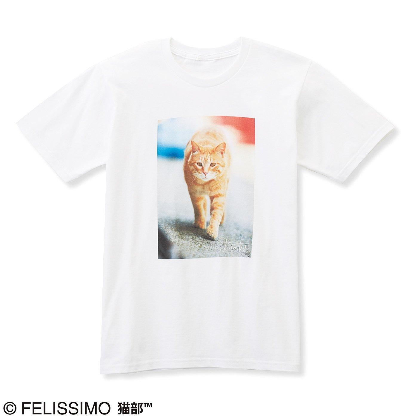 猫部×ケニア・ドイ 地域猫チャリティーTシャツ2019