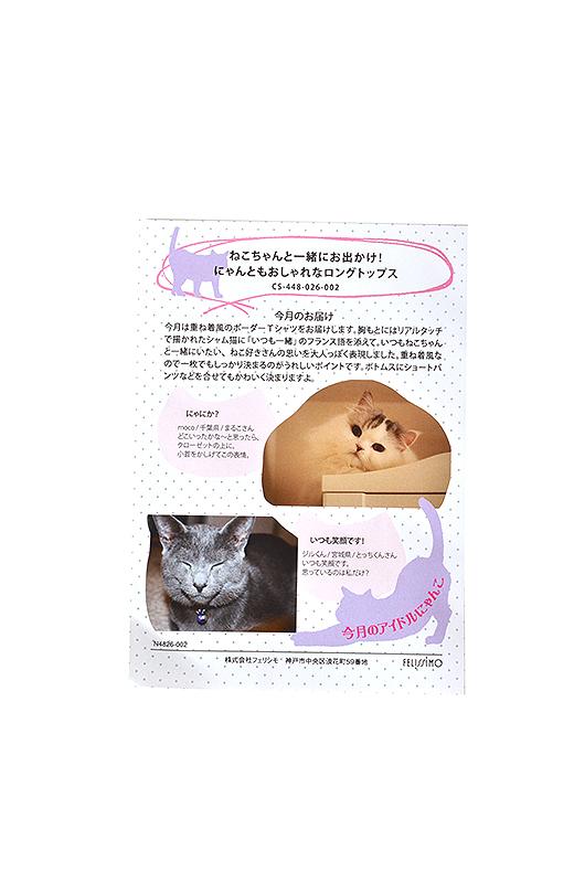 猫部ウェブサイトで募集した、写真やエピソードを紹介。