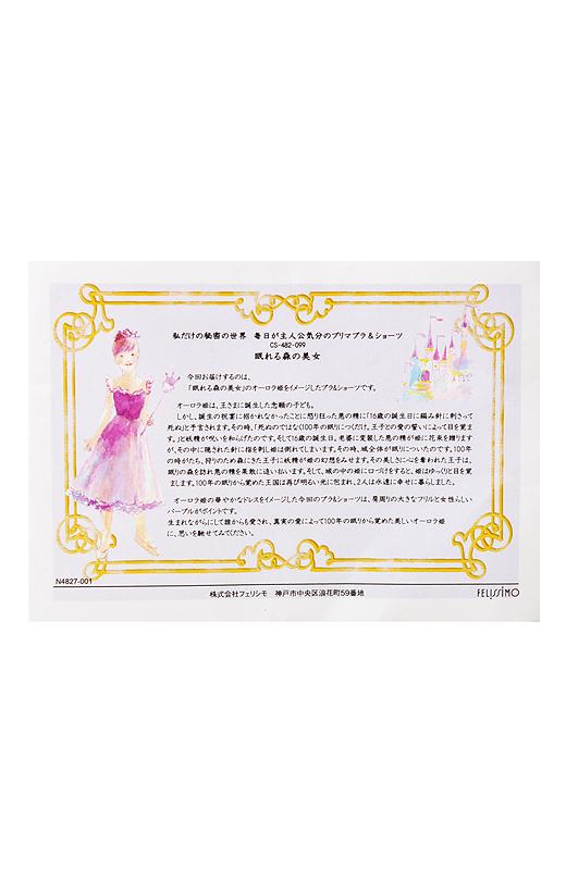 演目のストーリーが書かれた情報カード付き。物語を読んで下着を身に着ければたちまちヒロイン気分に。