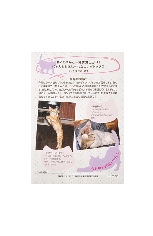 〈情報カード〉 猫部ウェブサイトで募集した、写真やエピソードを紹介。
