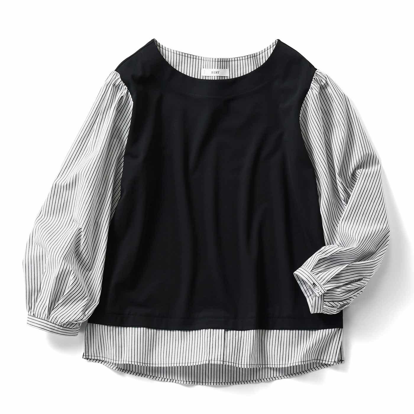 IEDIT[イディット] Tシャツ以上ブラウス未満の着映えドッキングトップスの会