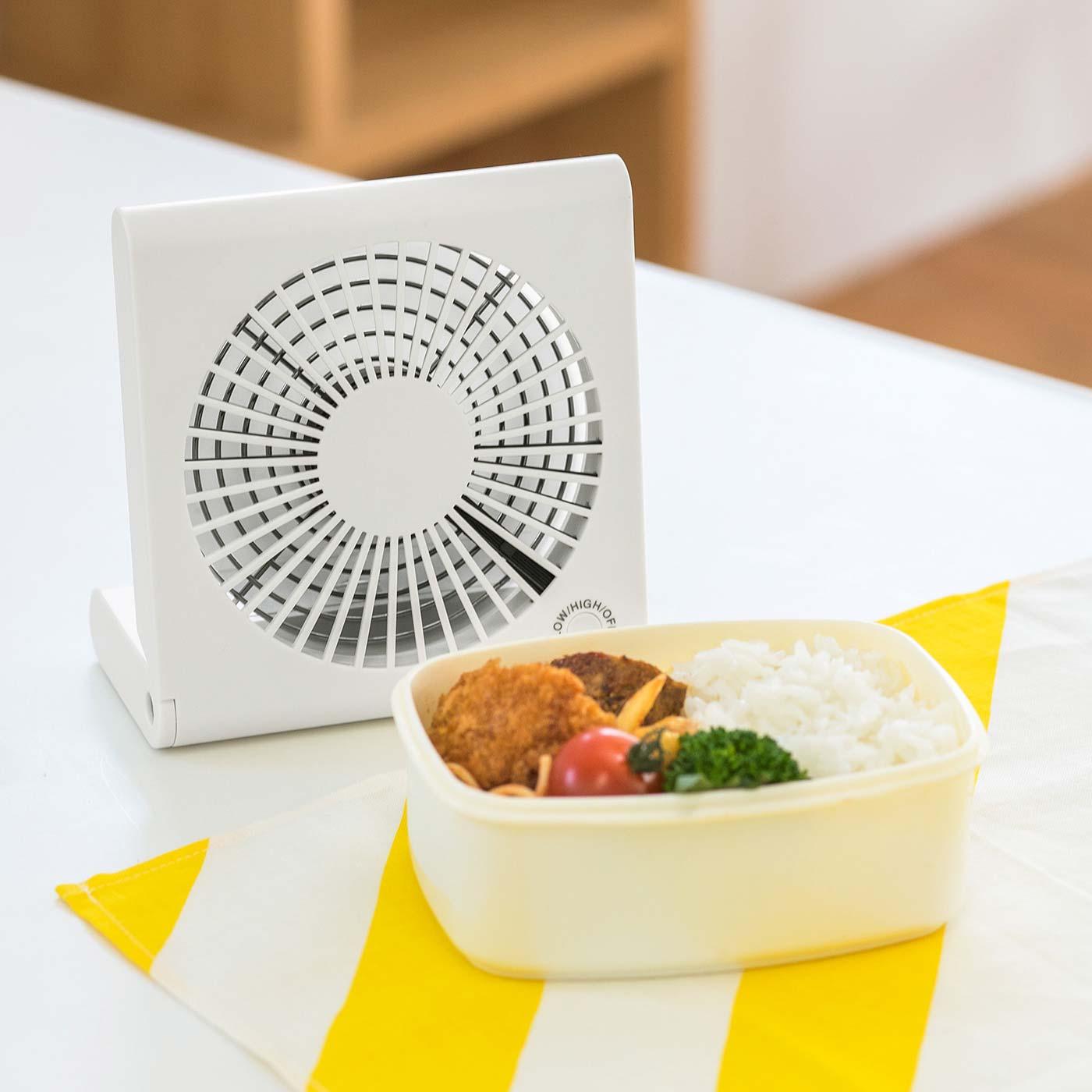 忙しい朝、お弁当を急いで冷ましたいときにも便利。〈お届けのカラーとは異なります〉