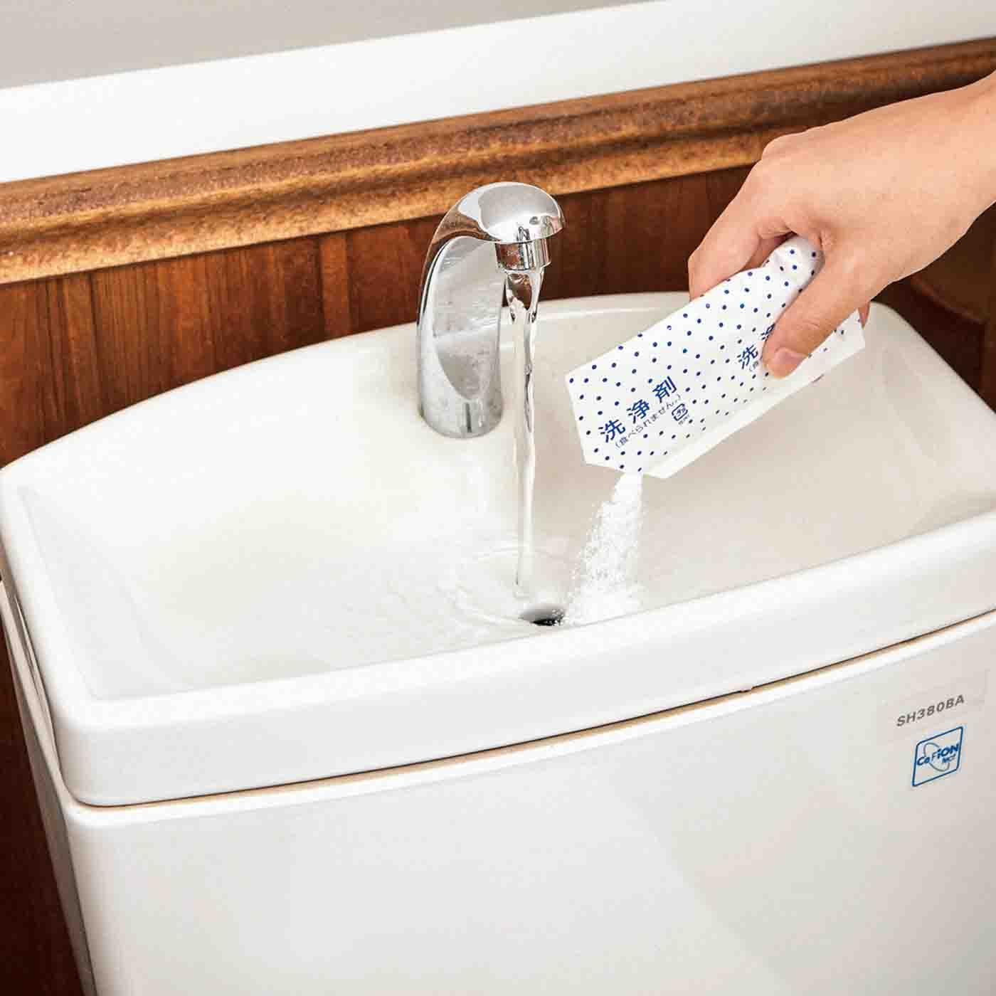 フェリシモ 週1回のお掃除ですっきり 入れるだけの トイレタンククリーナーの会【定期便】