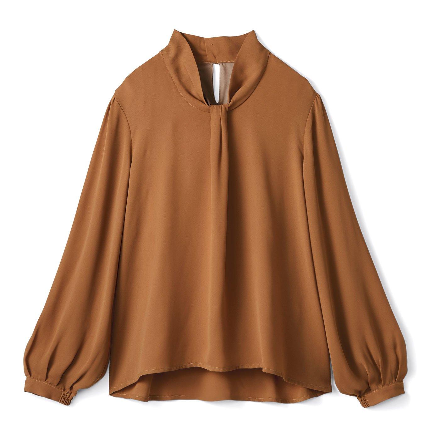 DRECO by IEDIT Tシャツ心地できちんと顔な ボウタイ風ドッキングTブラウス〈キャメル〉