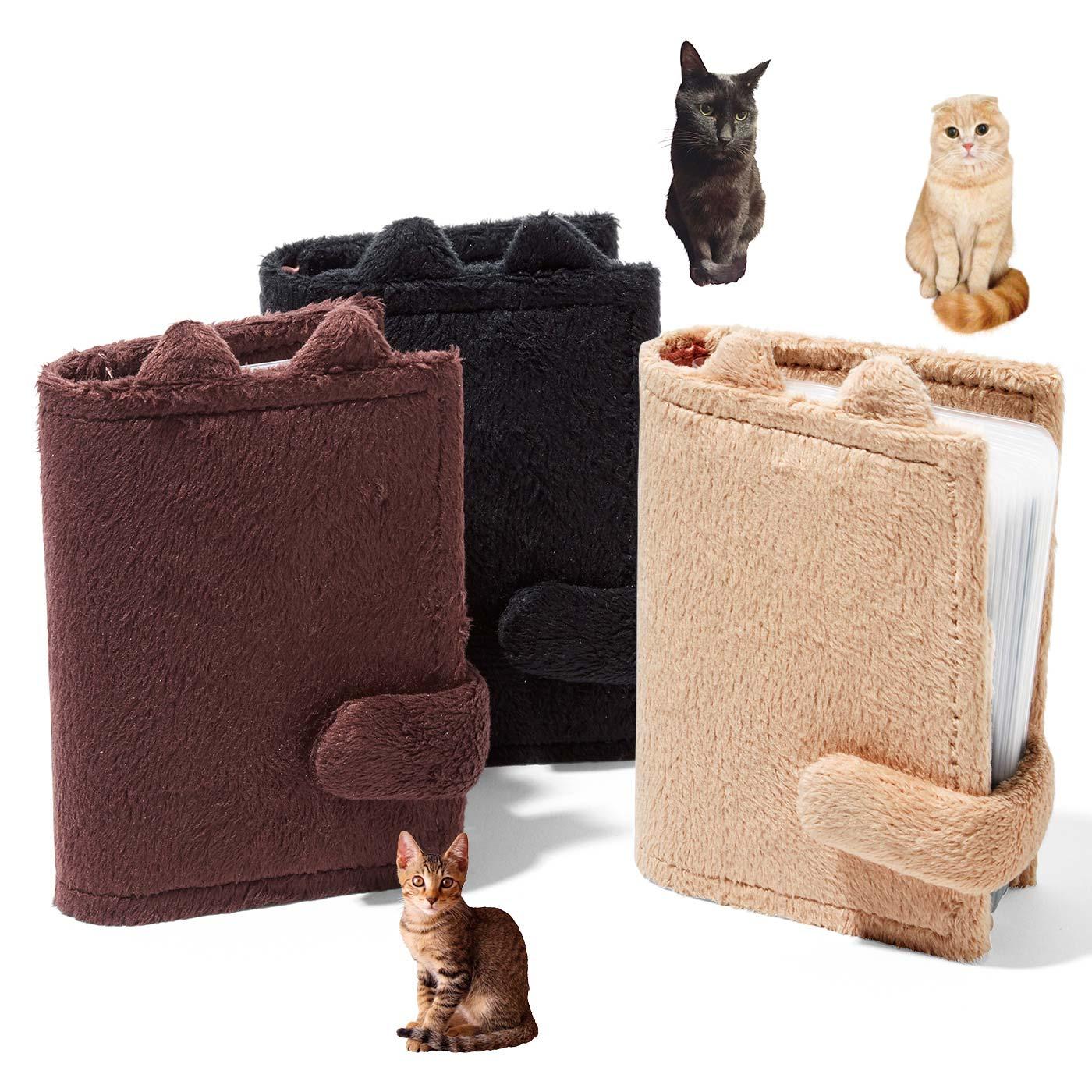 (左から)キジトラ、黒猫、茶トラ。