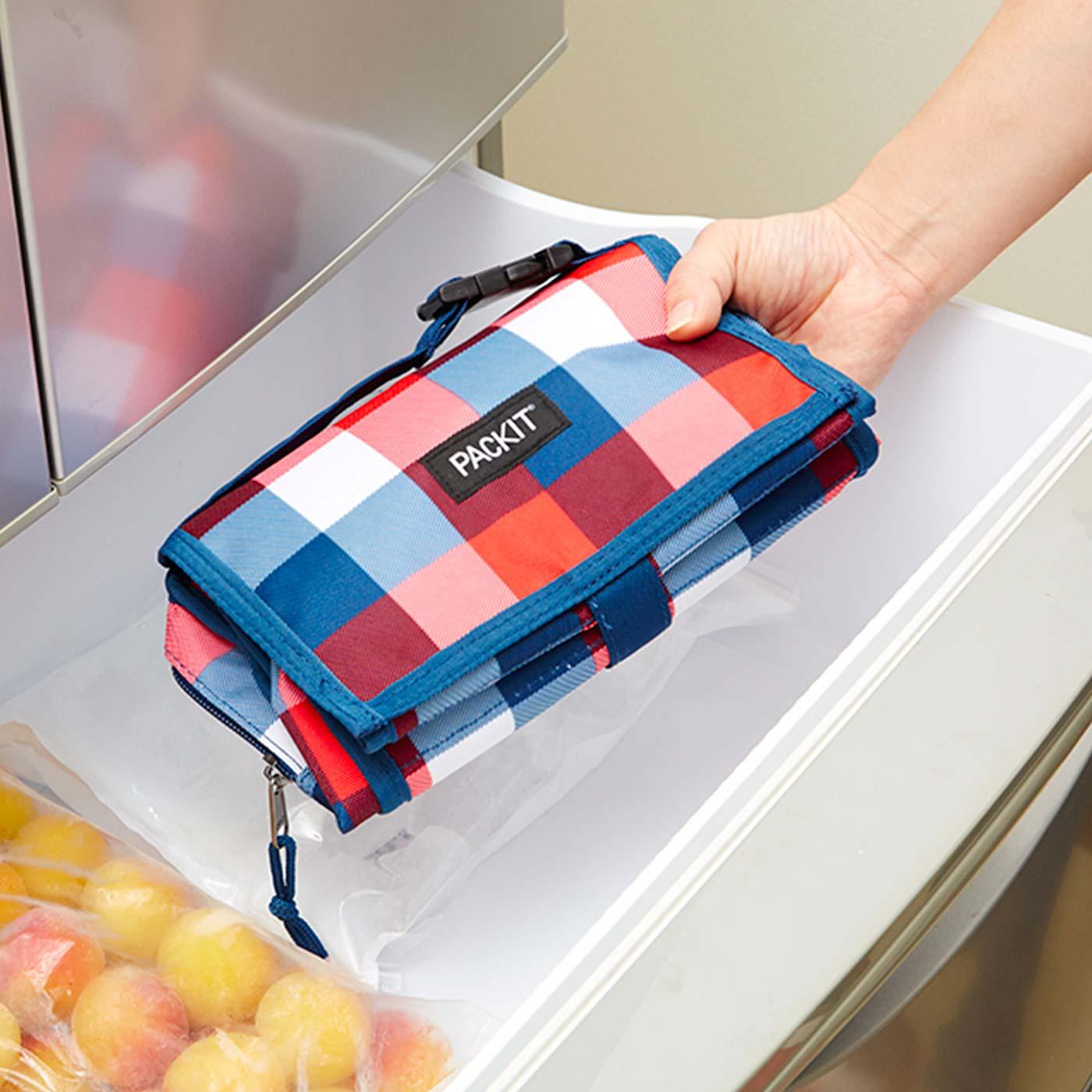たたんだバッグをそのまま冷凍庫に入れて冷やします。