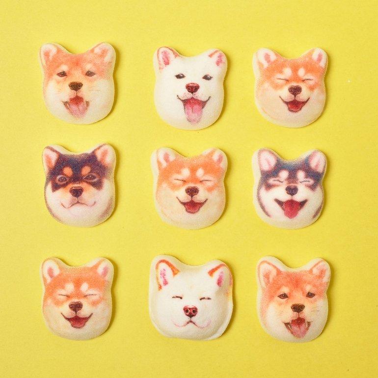YOU+MORE! 食べられないかわいさミニ和風マシュマロ柴犬ほうずい〈チョコ餡〉