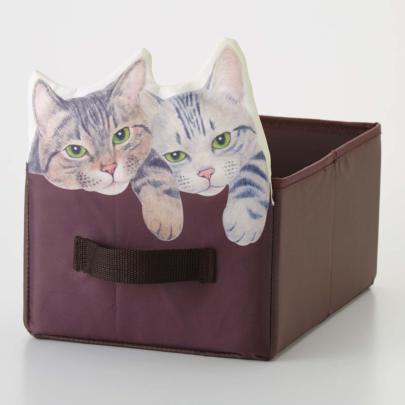 YOU+MORE! 棚が猫まみれになる 箱からのぞく猫収納ボックスの会