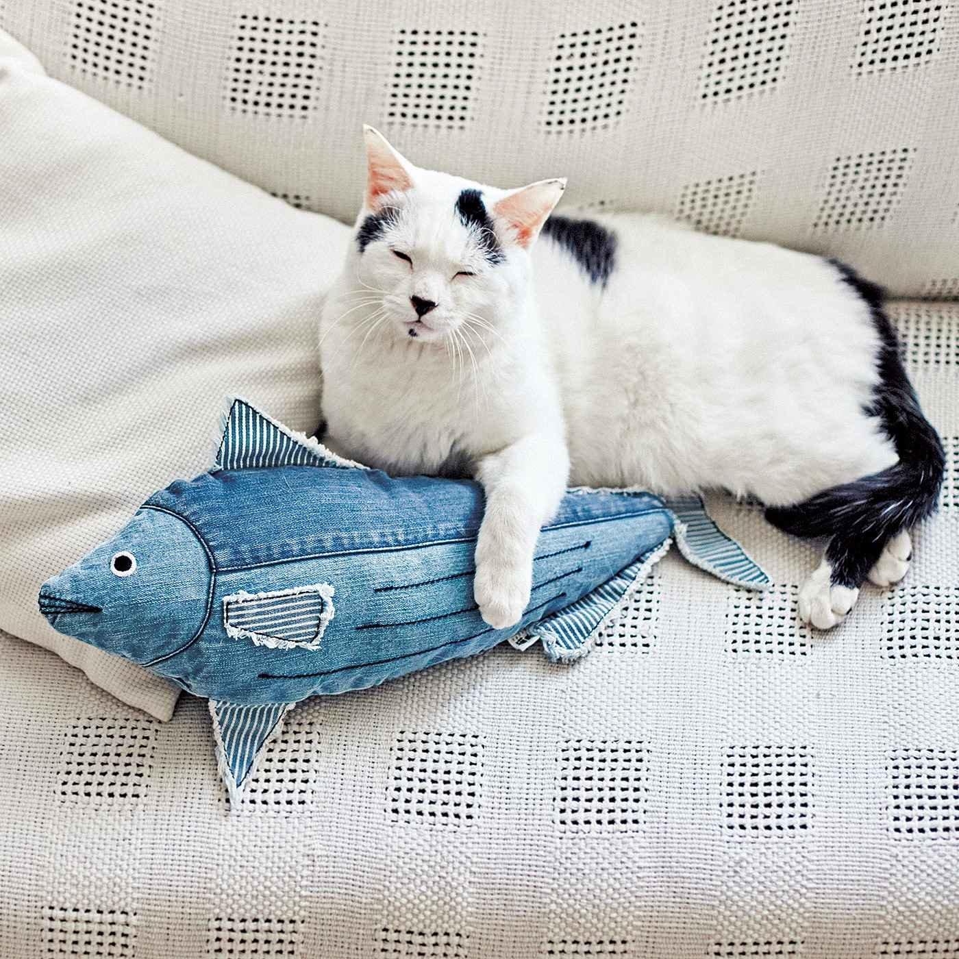 USEDo×猫部 にゃんとびっくり!本格デニム工場で作ったデニムのカツオ