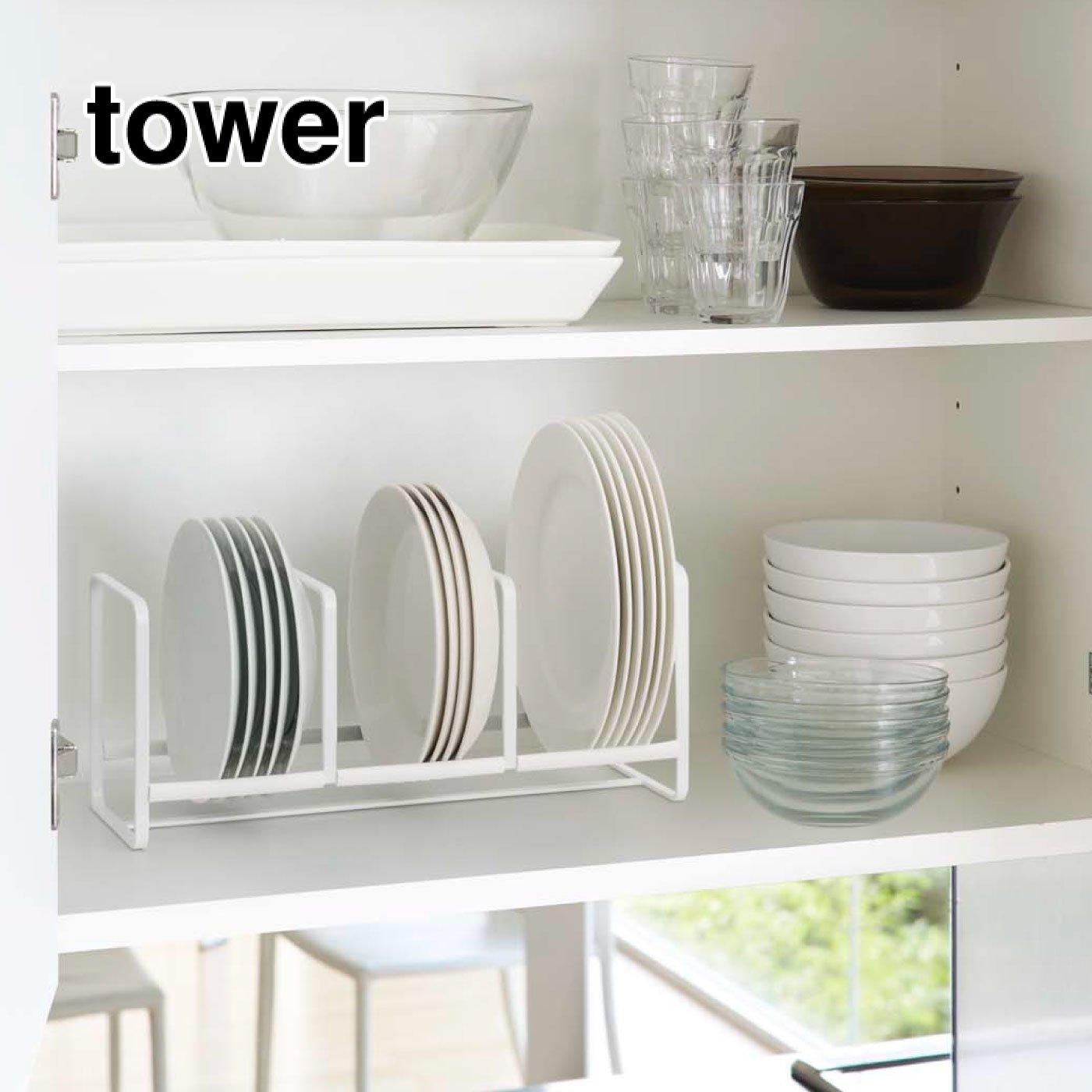 tower ディッシュラック ワイド Sサイズ