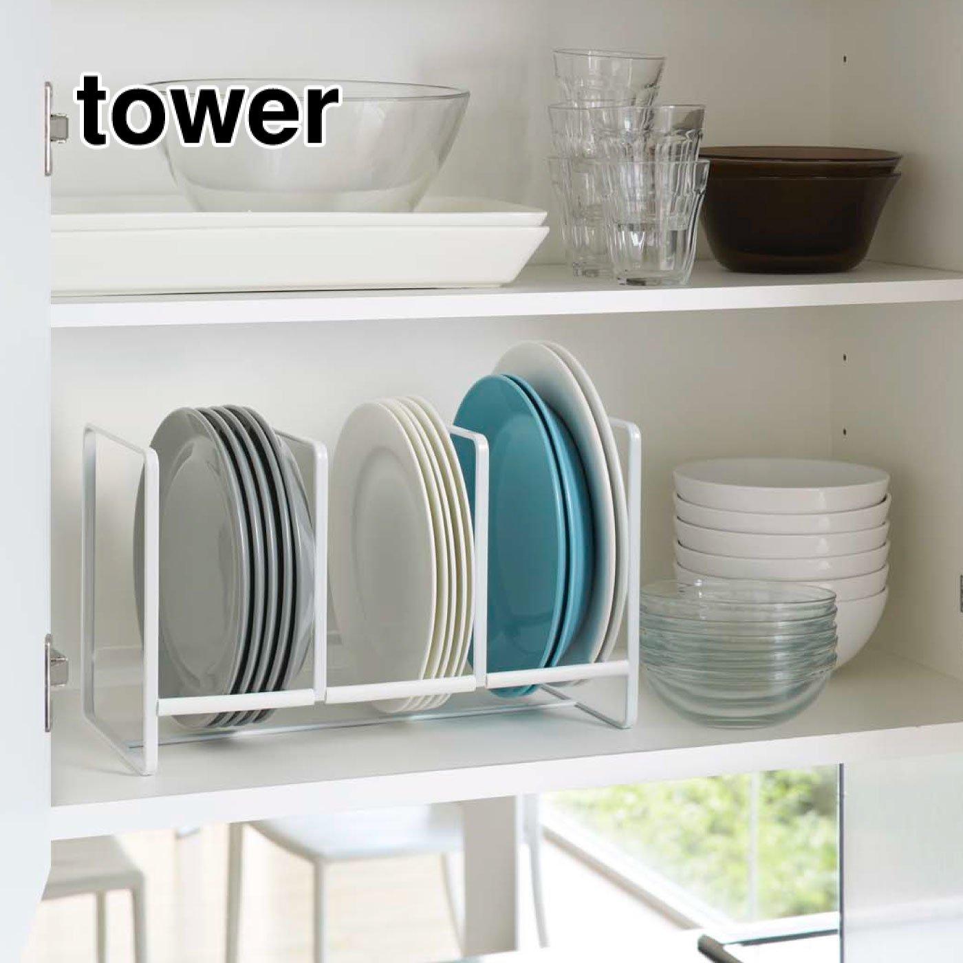 tower ディッシュラック ワイド Lサイズ